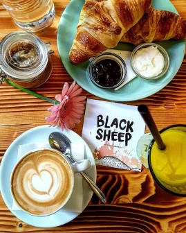 black_sheep