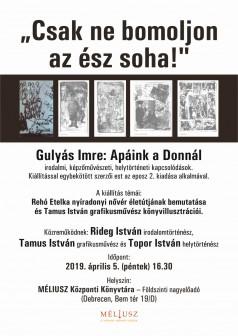 apaink_a_donnal_konyv_plakat